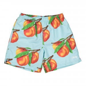 Stussy Peaches Water Short ( 113130 / 0801 / Blue )