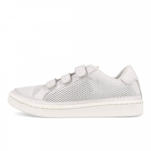 Lacoste Camden New Cup Mesh TFM ( 7-27TFM3405001 )